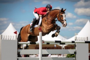 Offerta lezione di equitazione Roma